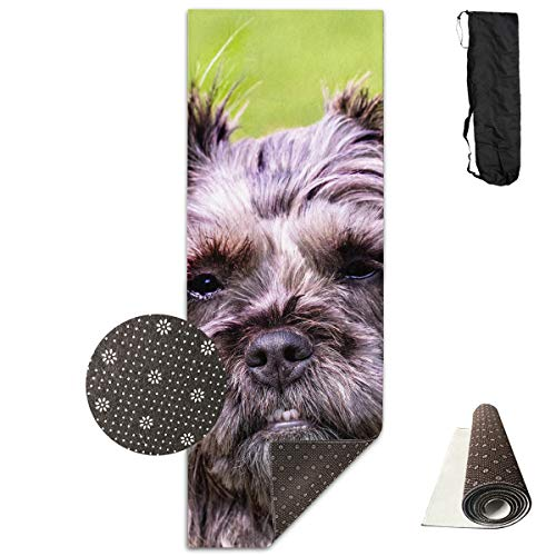 Adult Gray Cairn Terrier Yoga Mat - Advanced Yoga Mat - Non-Slip Lining - Easy to Clean - Latex-Free - Lightweight and Durable - Long 180 Width 61cm