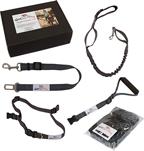 Hands Free Dog Leash & Dog Seatbelt - Bike Dog Leash and Running Dog Leash, Adjustable Belt from 30-52'' by Wag Haus