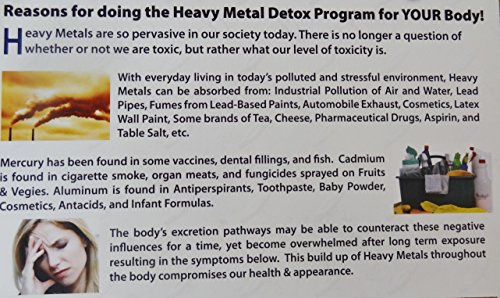 HEAVY METAL DETOX 11 X 17 inch LAMINATED PROMOTIONAL POSTER