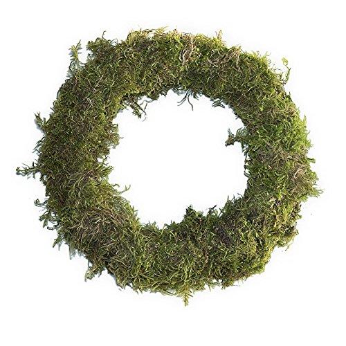Furrow & Vine - 20'' Fresh Moss Wreath by Furrow & Vine