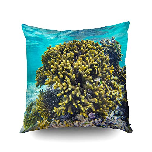 ROOLAYS Square Throw Pillowcase Covers 18X18Inch Africa Scuba Diving Underwater Coral Fish in Holiday Zanzibar Snorkeling a Easter Both Sides Print Zip Pillow Cases Farmhouse Decor Cushion,Blue Red