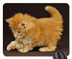 playing fluffy kitty Mouse Pad, Mousepad (Cats Mouse Pad, 10.2 x 8.3 x 0.12 inches)