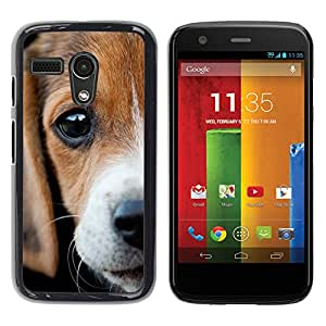 Vortex Accessory Hard Protective Case Skin Cover For Motorola Moto G ( 1St Gen Only ) - Beagle Eyes Sad Cute Puppy Pet