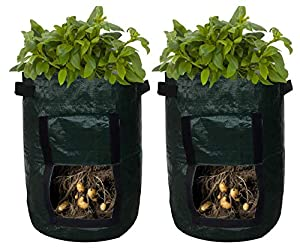 Upstreet Potato Planter Bags