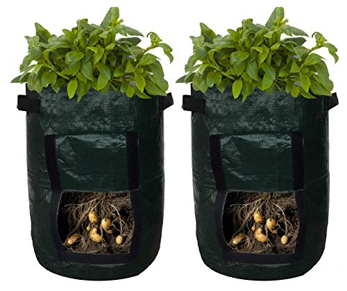 Potato Planter Bags - Garden Tub for Vegetable Growing with Flap Access - 2 Pack