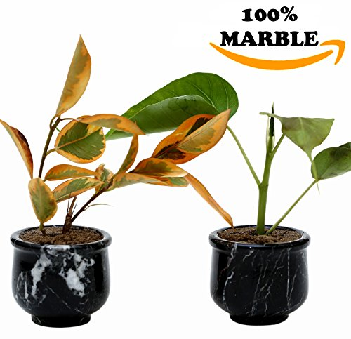 Succulent Pot Small Artificial handmade Marble Modern for sale  Delivered anywhere in USA