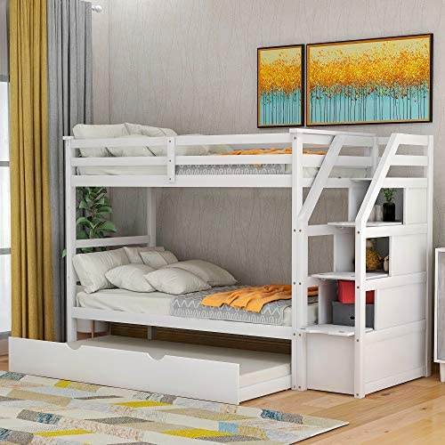 Thin Ant Bunk Bed