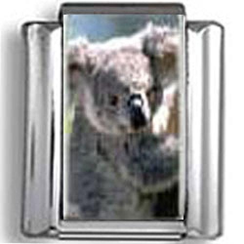 Koala Bear photo Italian charm