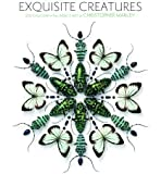 Exquisite Creatures 2015 Calendar: The Insect Art of Christopher Marley