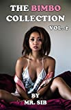 Best selling erotica author Mr. SIB presents to you the second volume of The Bimbo Collection, featuring another collection of the best erotic stories around, all featuring the hottest bimbos, doing the sexiest things!This collection includes:Talk Le...