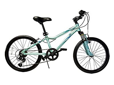"""Ryda Bikes Flow - 20"""" Blue Youth Unisex Bike - 7 Speed All Purpose Bicycle for Kids with Flat Proof Tires"""