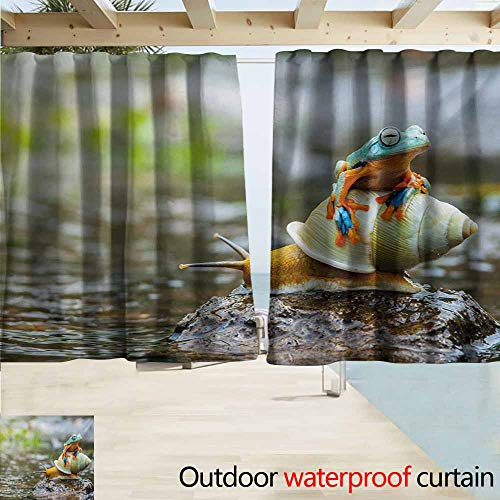 AndyTours Outdoor Patio Curtains,Funny Cute Colorful Frog Above The Snail Riverscape Water Rock Mollusks Amphibian Animals,Simple Stylish Waterproof,W55x45L Inches,Multicolor