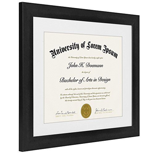 Review 11×14 Document Frame –