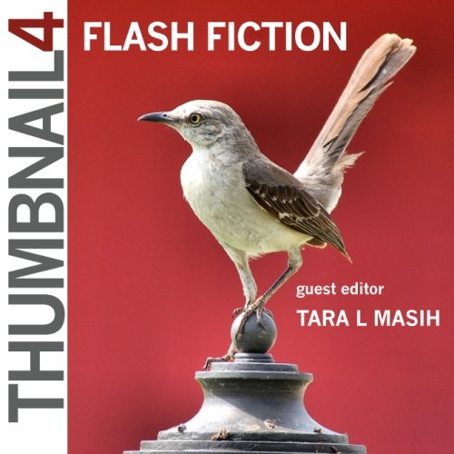 Thumbnail 4: Flash Fiction (Thumbnail Magazine: A Flash Fiction Journal)