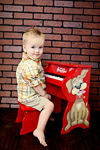 Schoenhut Learn-to-Play Toy Piano With 25-Keys and Patented Play-by-Color Tri-Play Learning System by Schoenhut (Image #1)