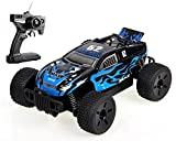 Max Super Power Cross-Country Truggy RC 1/16 High Speed Racing Car RTR 4WD Off-Road Monster Truck Big-wheel Buggy by POCO DIVO