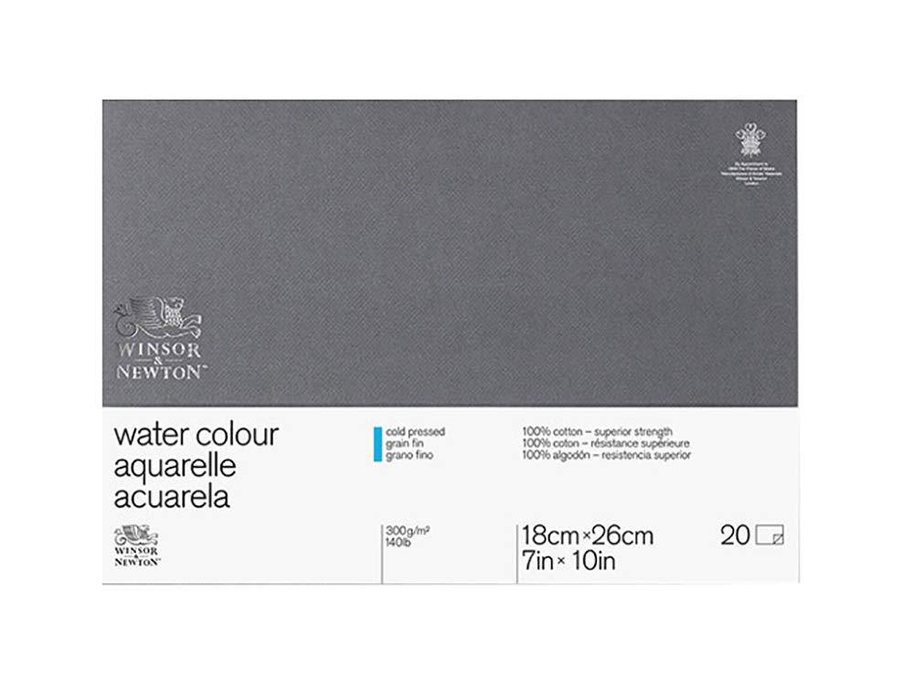 WINSOR & NEWTON Professionnel Papier Aquarelle Bloc 300g/m² grain fin 30, 5 x 40, 6 cm 6663265