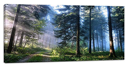 White Frost Gift Box - Yiijeah Canvas Prints Modern Wall Art Nature Frost Landscape Picture Print on Canvas,Large Framed Contemporary Artwork Ready to Hang for Living Room Bedroom Wall Decor 24x48inch