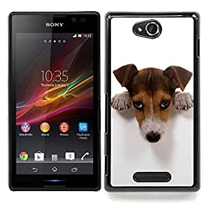 Stuss Case / Funda Carcasa protectora - Lindo Culpable Doge - Sony Xperia C