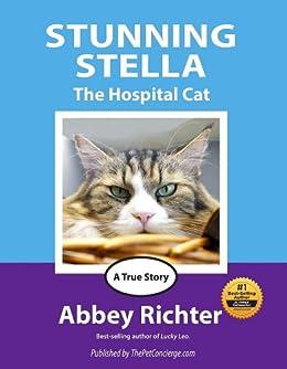 Stunning Stella by [Richter, Abbey]