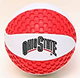 Ohio State buckeyes Fun Gripper 5.5 Mini Basketball NCAA By: Saturnian I