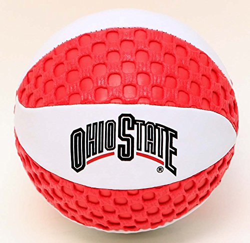 Ohio State buckeyes Fun Gripper 5.5 Mini Basketball NCAA By: Saturnian I