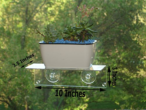 H4 Multi-Use Suction Cup Window Shelf- Design an Indoor Garden, Ledge for Succulents, Flowers or Herbs. Other Solutions Include a Spice Rack or Bathroom Mirror Shelf. Plants/Planters NOT Included. by H4