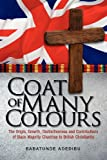 Coat of Many Colours, Babatunde Adedibu, 0956180019