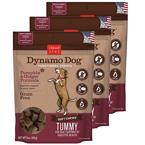 Cloud Star Dynamo Dog Tummy Digestion Support Soft Chew Treats - Pumpkin & Ginger - Grain Free - (3 Pack) 5 oz Each