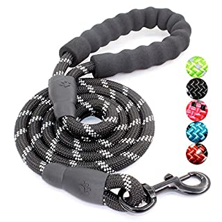 BAAPET 5 FT Strong Dog Leash with Comfortable Padded Handle and Highly Reflective Threads for Medium and Large Dogs (Black)