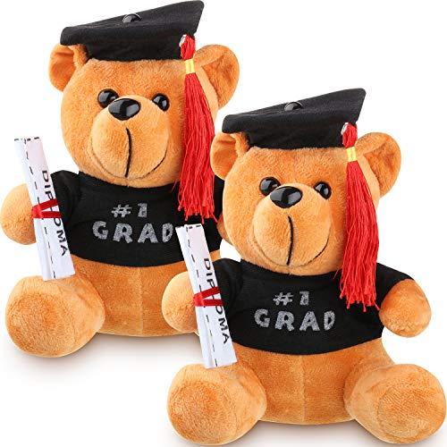 (Hsei 2 Pieces Graduation Plush Bear Class of 2019 Grad Bear with Black Cap Graduation Gift Bear for Table Shelf Decor Graduates Gifts)