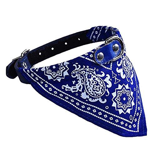 Blue Vinyl Collar - 9