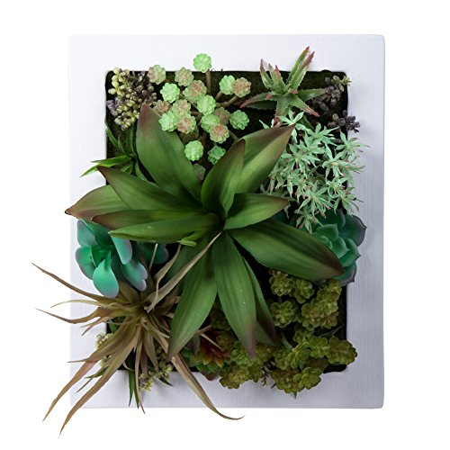 Truu Design, Faux Living Succulent Gardn Crassula, 12 x 10 inches, White
