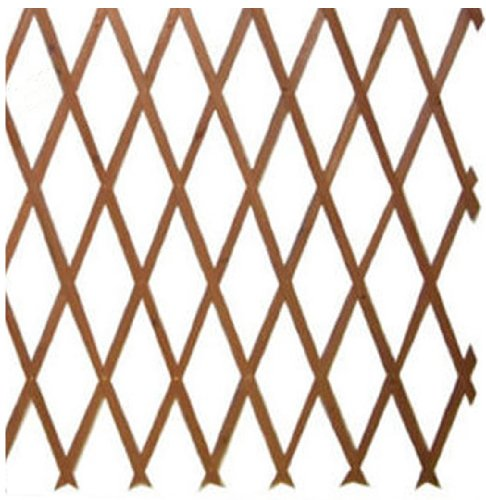 Expanding Wooden Trellises Garden Plant Support Fence Pannels 4 Sizes  Trellis Available (60cm): Amazon.co.uk: Garden U0026 Outdoors