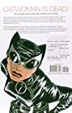 Image of Catwoman Vol. 1: Trail of the Catwoman (Catwoman (Paperback))