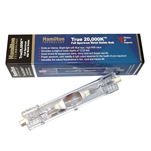 Metal 20000k+ Halide Bulb - 250 Watt 20000K Metal Halide Bulb - Hamilton, Double Ended