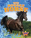 The Morgan Horse, Sara Green, 1600147399