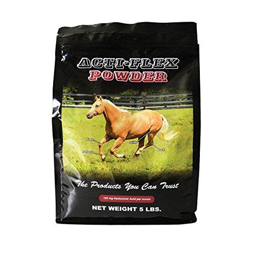 Acti Flex Powder - 5 Lb Refill Bag