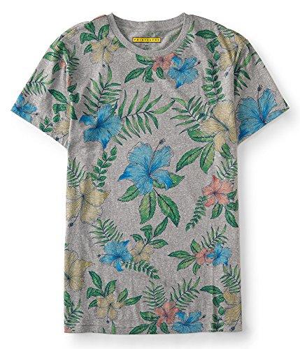 aeropostale-mens-prince-fox-hibiscus-graphic-t-shirt-m-light-heather-grey