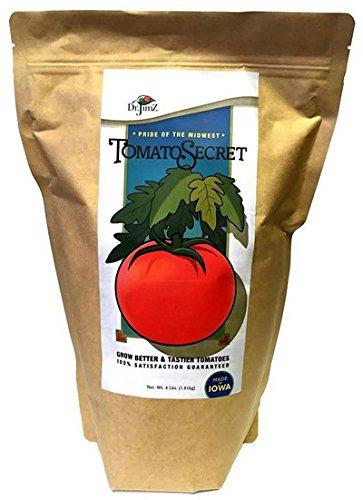 Dr. Jimz Tomato Secret Grow Big Tomatoes 4 (Big Tomato)