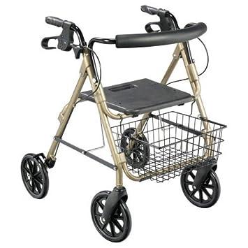 Amazon.com: D-Lite Andador Big Wheel), Opciones – Color: Oro ...