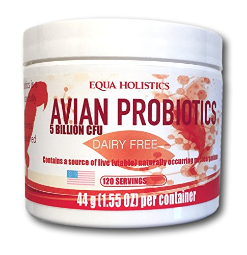 Cheapest Avian Probiotics | 120 Servings | Dairy Free Check this out.