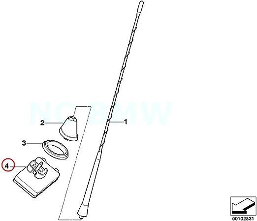 BMW - Amplificador de antena para caña de pescar: Amazon ...