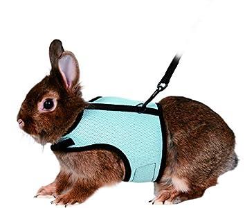 Trixie Harnais avec Laisse en nylon pour lapin et petits rongeurs