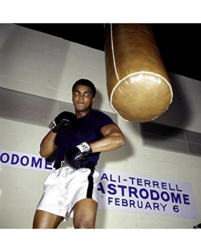 Globe Photos ArtPrints Muhammad Ali Training At The Astrodome - 8