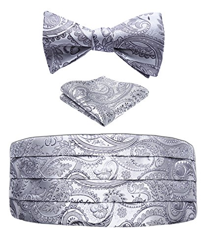 (Men's Floral Paisley Silk Cummerbund & Self Bowtie and Pocket Square Set Grey)