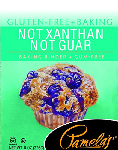 Price comparison product image Pamela's Products Gluten Free Not Xanthan Not Guar Baking Binder,  8 Ounce