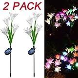 DDLBiz 2Pcs Lily Flower Solar Powered Garden Stake Lights Artificial Flowers LED Light (C)