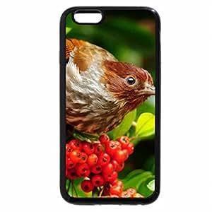 iPhone 6S / iPhone 6 Case (Black) Cute Little Bird