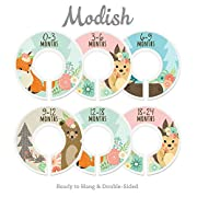 Modish Labels Baby Nursery Closet Dividers, Closet Organizers, Nursery Decor, Baby Girl, Woodland, Fox, Bear, Owl, Hedgehog